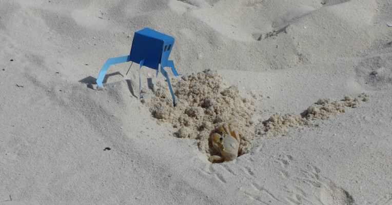 2013-11 Minion and crab